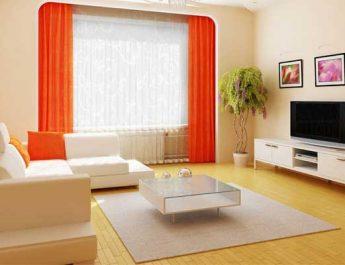 Tips Membuat Rumah Bebas Kecoak